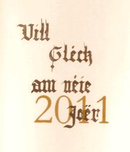 2011b-256x300