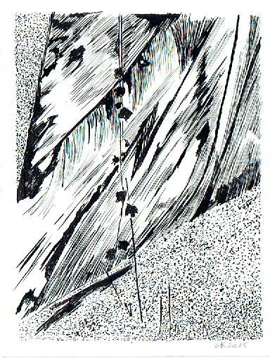cn-dessin-w.jpg